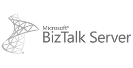 13 Logo Biz Talk Server