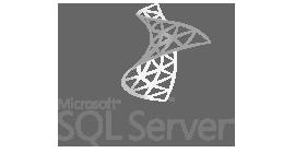 14 Logo SQL Server